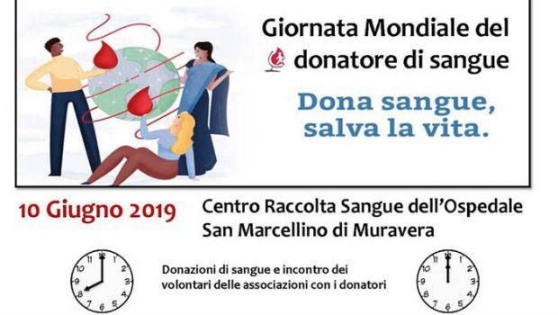 Giornata donazioni sangue
